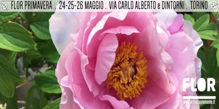 FLOR Primavera 2019 Eventi, serate..robe