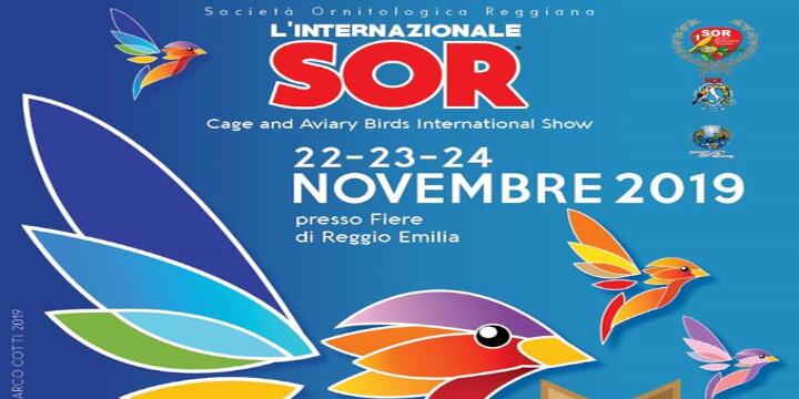 80^ Esposizione Internazionale SOR