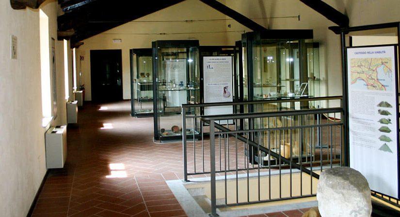 photo04 825x449 Museo Archeologico Casteggio