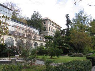 #Botanicaadomicilio