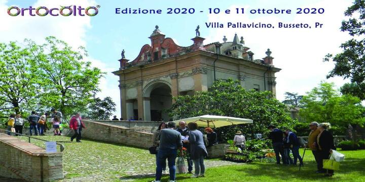 Ortocolto 2020 Edizione Autunnale Eventi, serate..robe