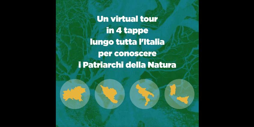 Screenshot 2021 02 02 Patriarchi della Natura Alberi straordinari du2019Italia 1 Eventi, serate..robe