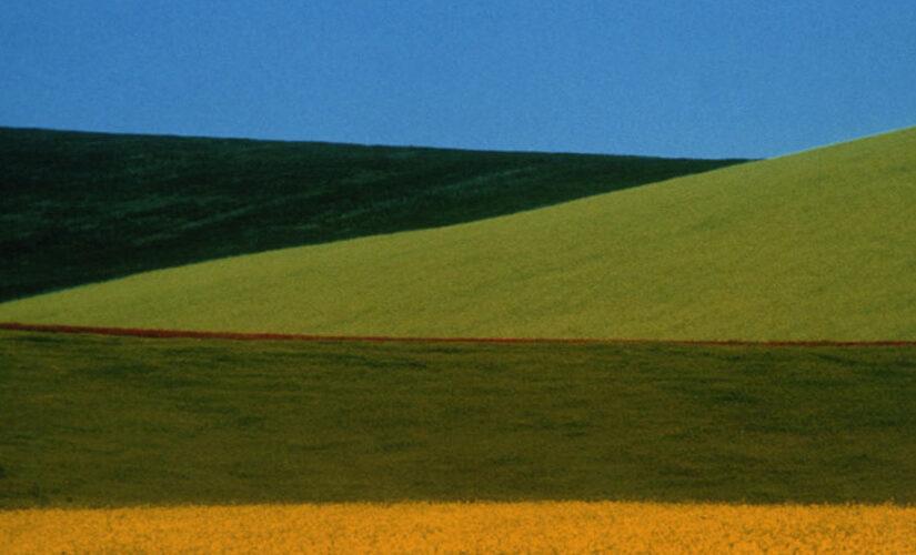 sito 3 825x500 @ Digital Exhibitions del Museo di Fotografia contemporanea